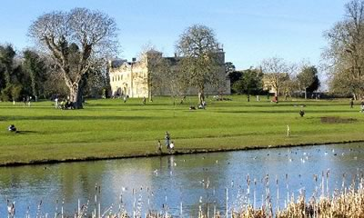 Lydiard Park Dog Walking